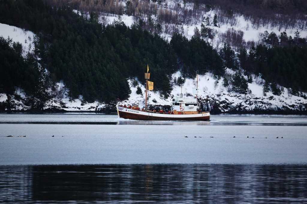 Nattfari Eyjafjordur