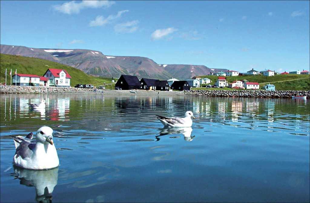 37-skagafjordur-mynd-6