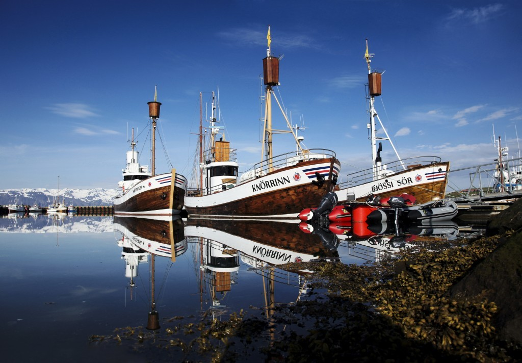 North_Sailing_fleet