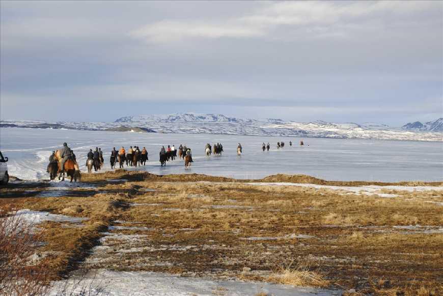 Horseback riding Winter Lake Mývatn