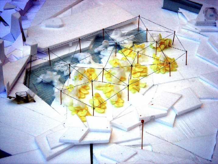ice oasis 096
