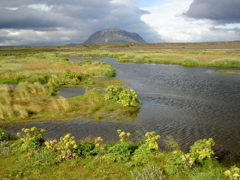 Bjorn ruriksson icelandictimes iceland_Buurfell tjoorsaardalur_PICT4996