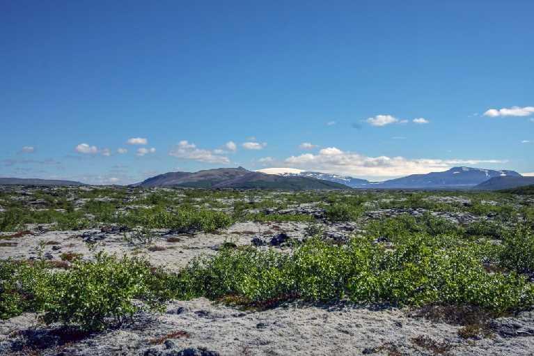 West Iceland 2