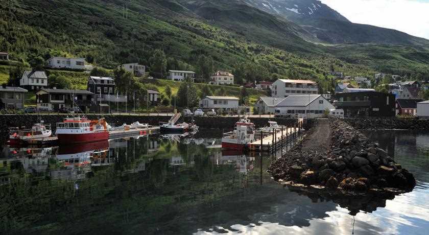 eskifjorder puffins hotels icelandic times