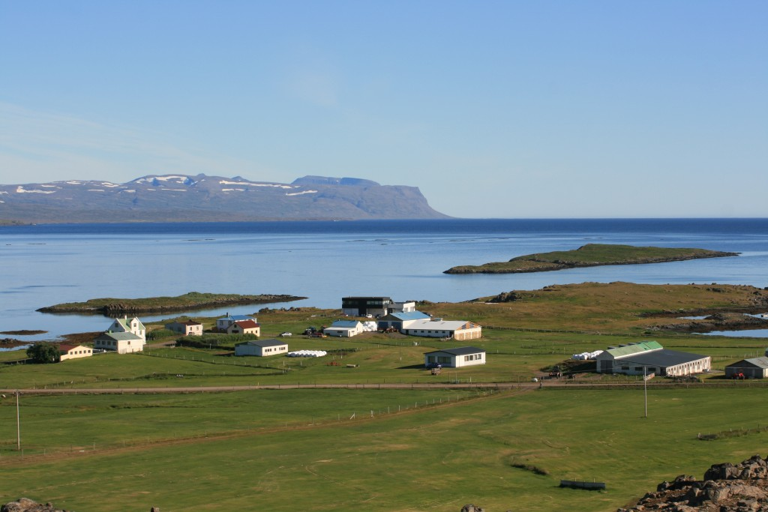 Broddanes icelandic times westfjords