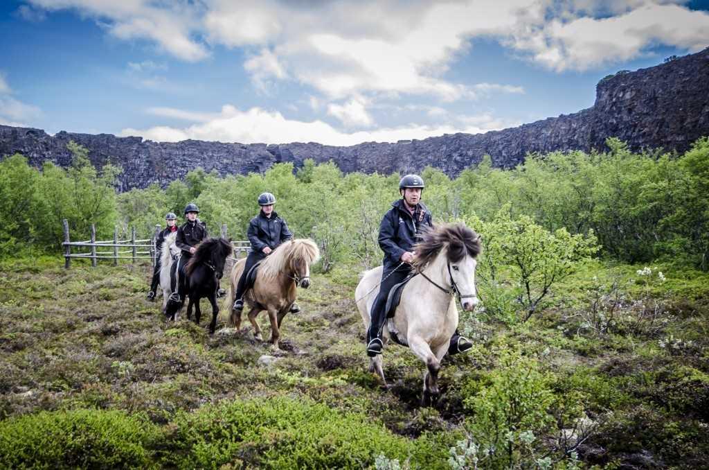 Asbyrgi Riding Tours