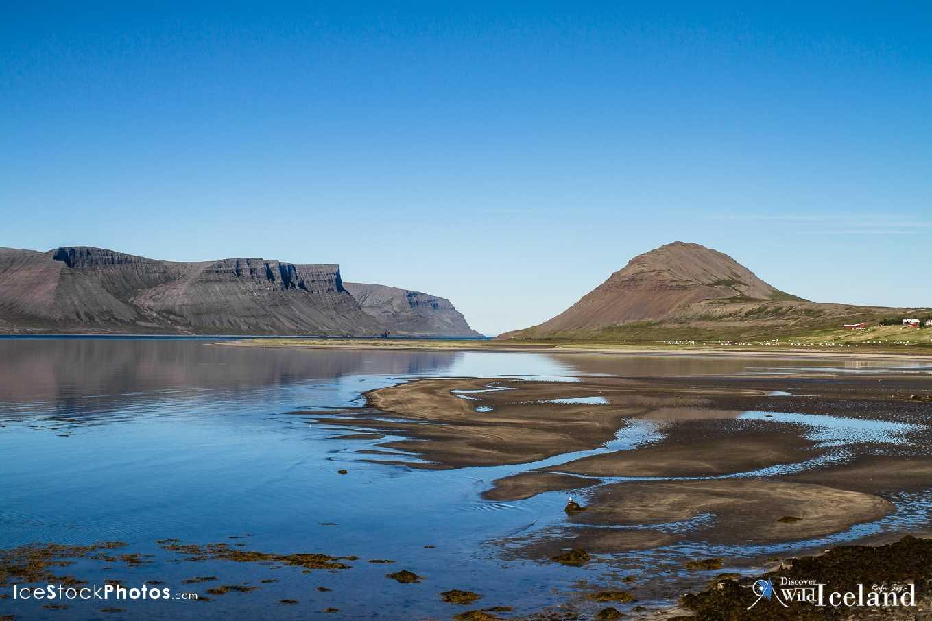 icelandic times Rafn_Sig-5314