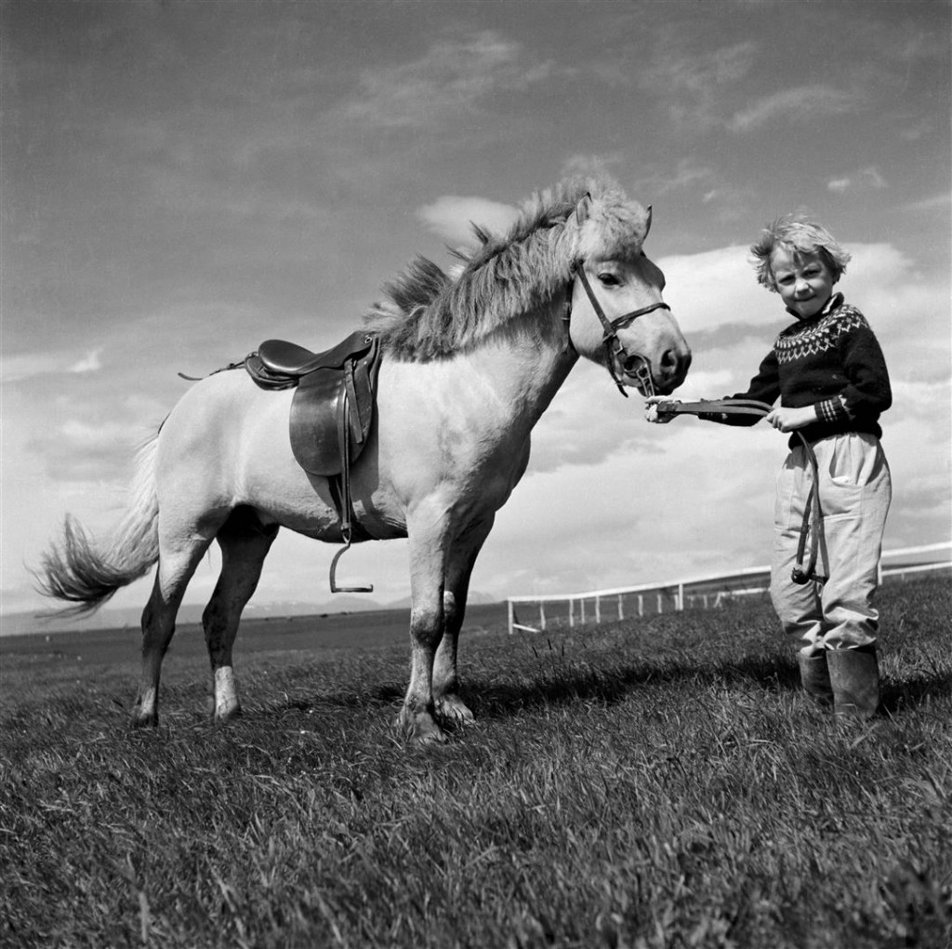 1955 til 1964, ung stúlka í lopapeysu með hest í taumi. Hesturinn er með reiðtygi, hnakk og beisli. Í þessari töku eru fleiri uppstilltar myndir af hestum með reiðtygjum, einnig myndir frá hestamannamótum. Ekki víst hvort þær séu allar teknar við sama tilfelli.