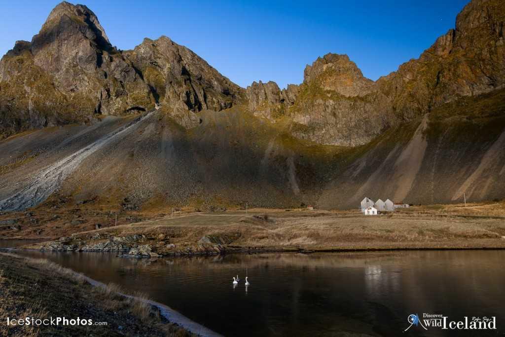Hvvalnes, East, Iceland