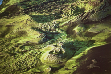 12. Screen Shot. Texture of the land is fascinating.