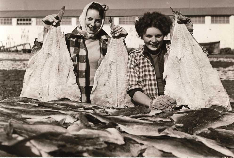 Tvaer medsalfisk