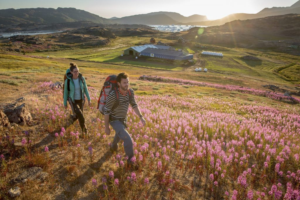 South-Greenland-2015-90 icelandictimes
