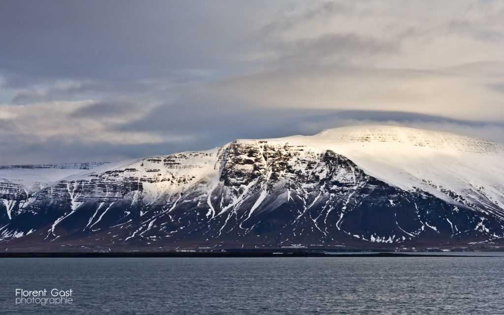 icelandic times IMG_2494