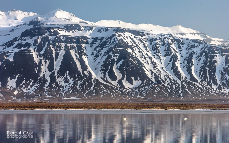 icelandic times IMG_3362