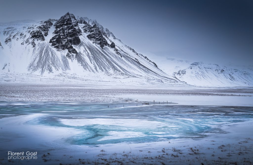 icelandic times gast IMG_3114