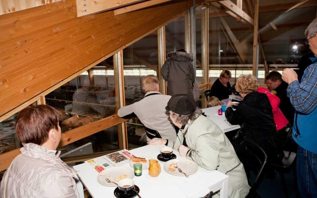 kaupfelag_i kaffi ku icelandic times