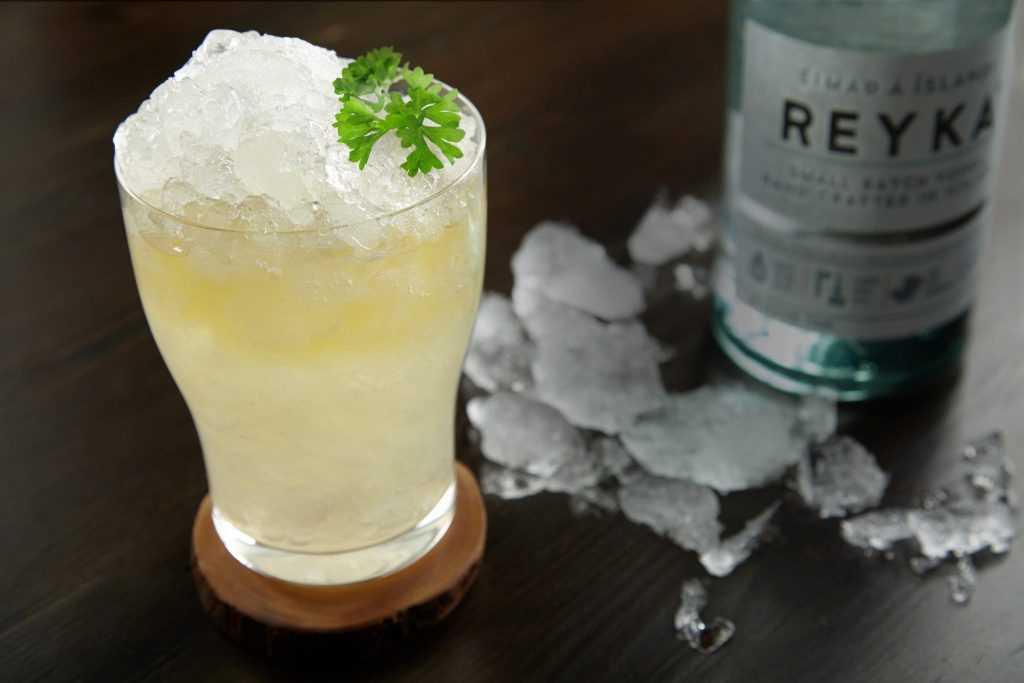 Cocktail book Vol 1 - Reyka Ice Wide Shut