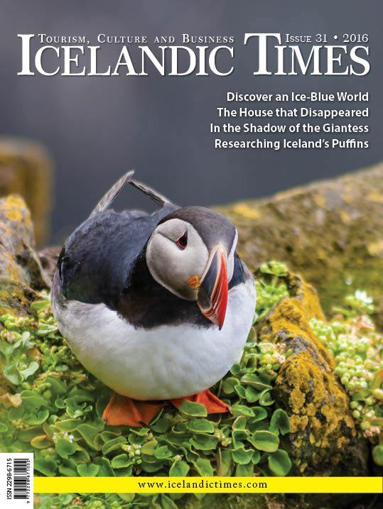 Icelandic Times - Issue 31