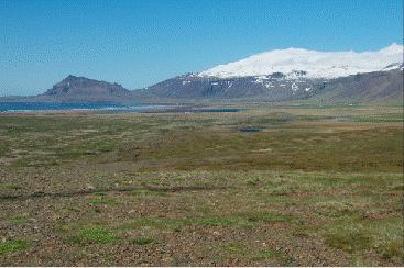 icelandic times Snaefellsjookull og Arnarstapi (i vestur) 2015-07-12 at 2.35.48 PM