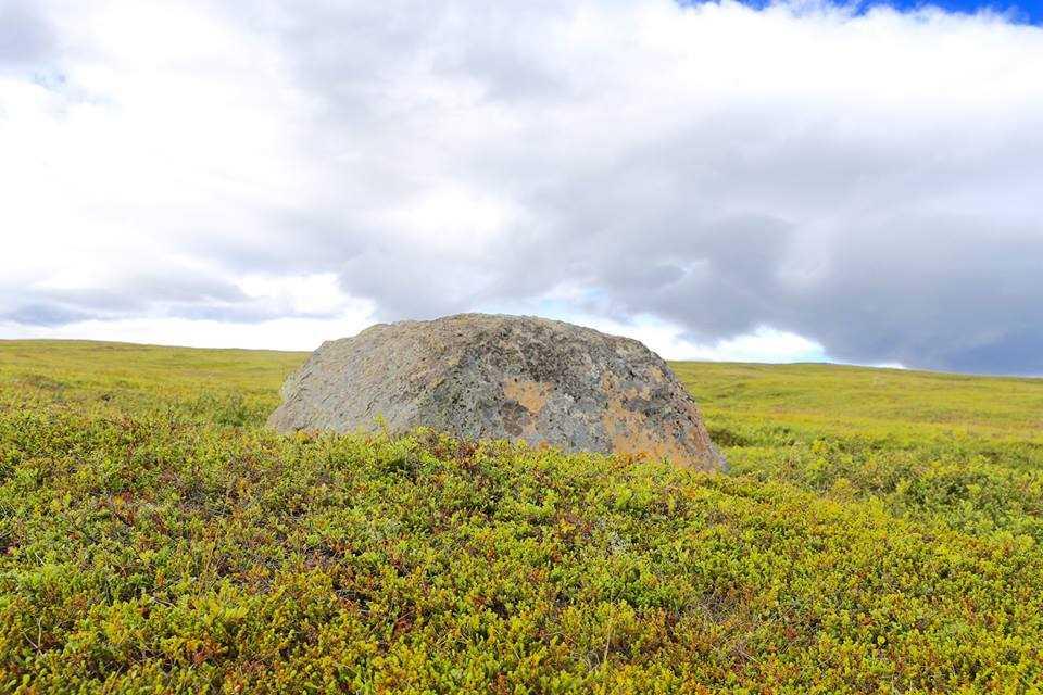 north-aurora-north-iceland