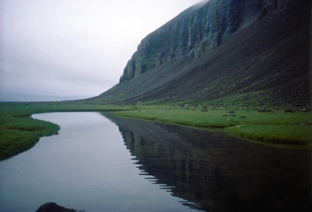 0698bjornrur_adalvik_mannfjall-icelandic-times