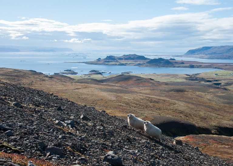 gongur-og-rettir-sept-2012-10
