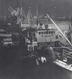 vestmannaeyjar-15