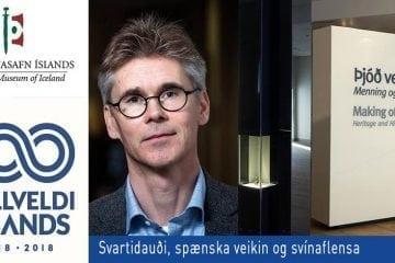 Svartidauði, spænska veikin og svínaflensa