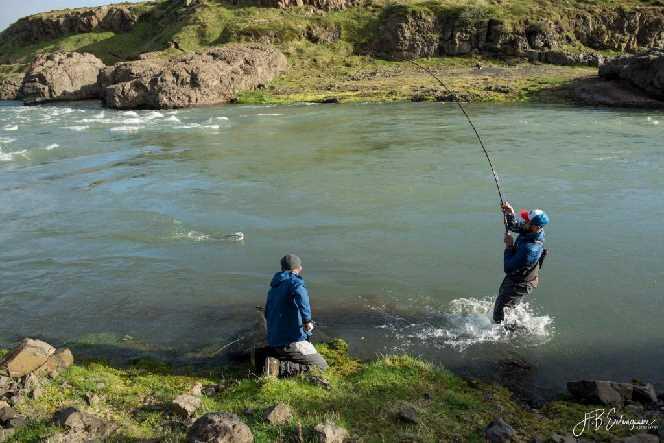 Pêche au saumon Blanda