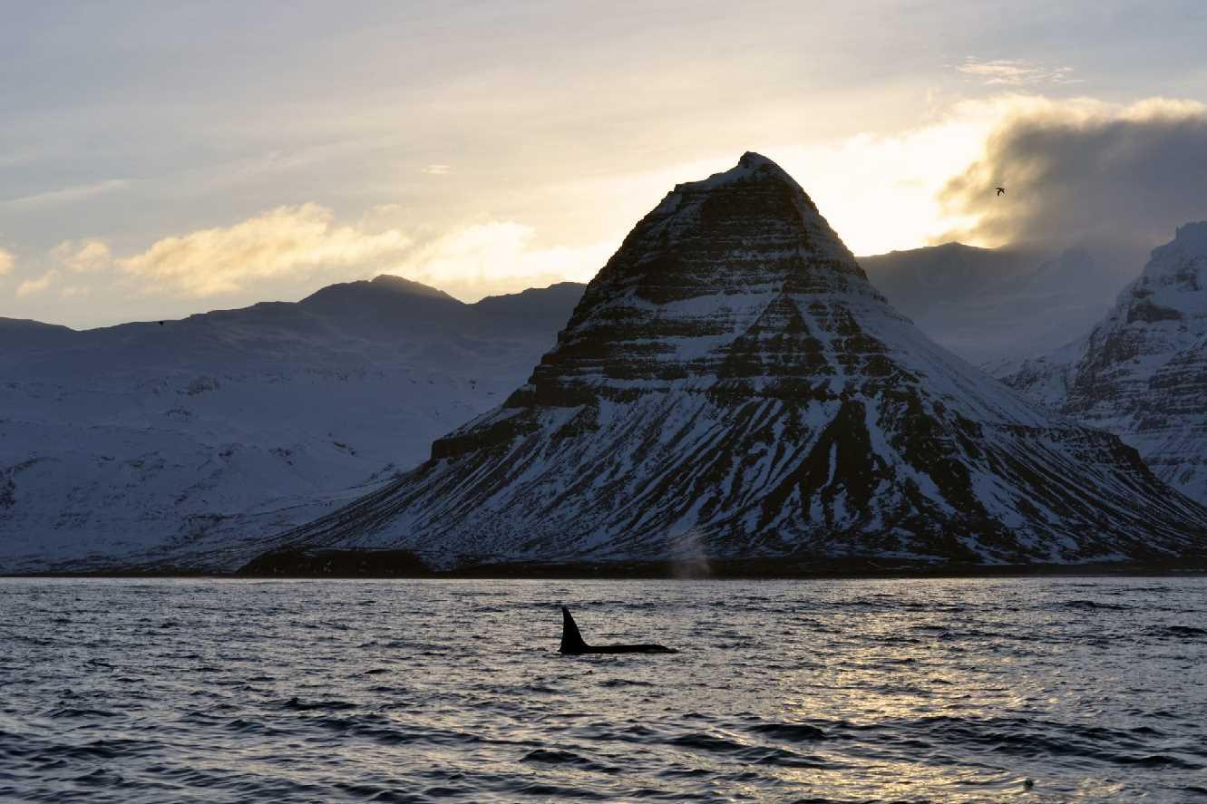 Láki Tours Grundarfjörður