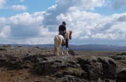 Saltvik Riding tours