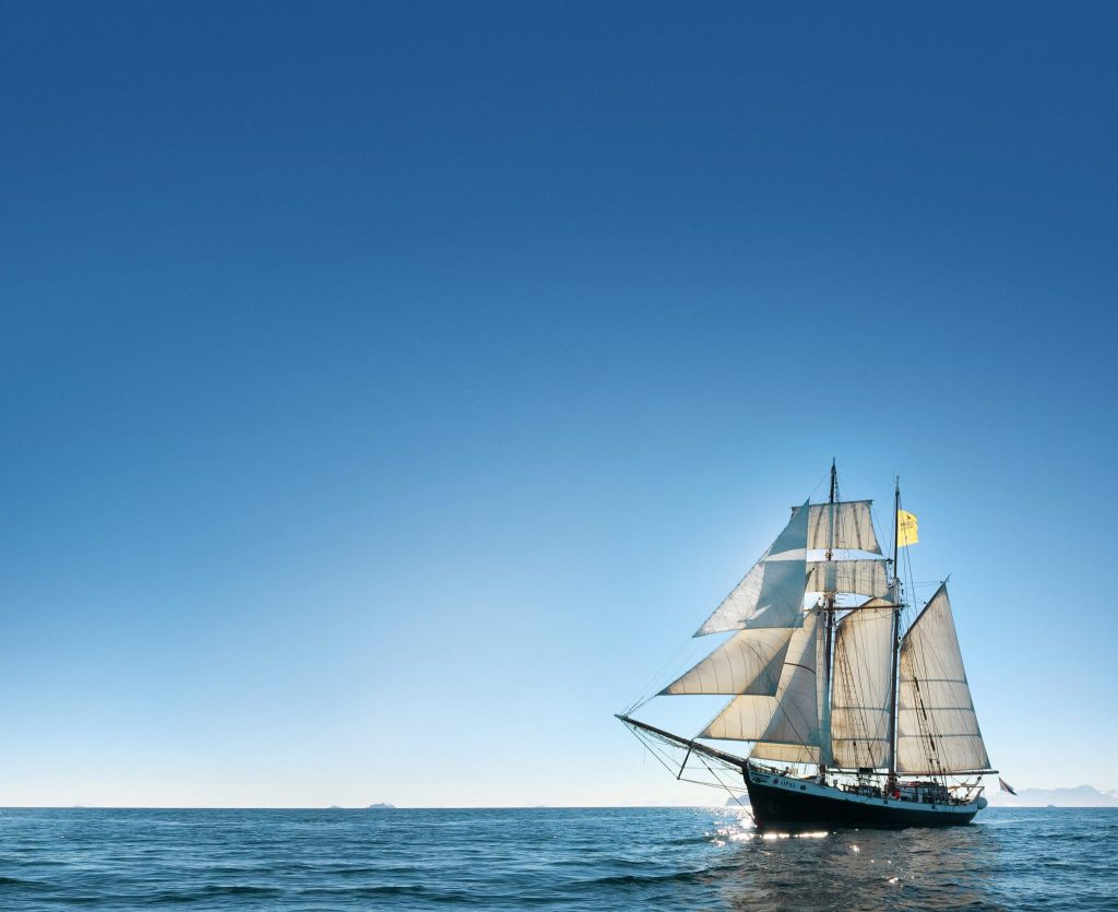 Whale watching schooner