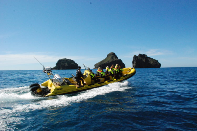 Ribsafari Westman Islands